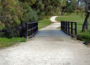 public park path4: very long path/track on public park reserve