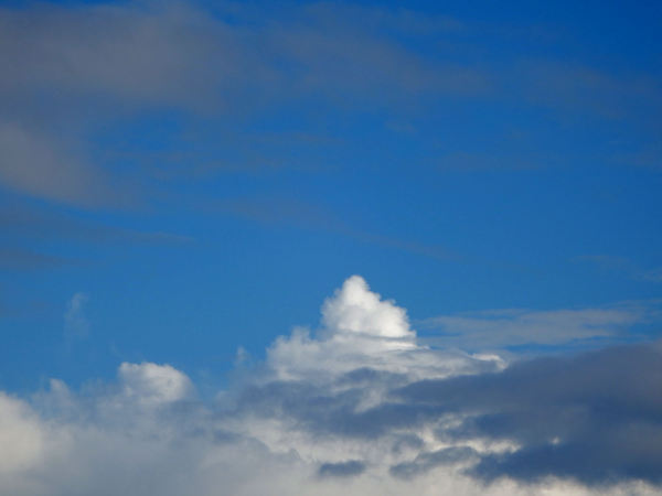 winter grey12: mixed winter cloud formations