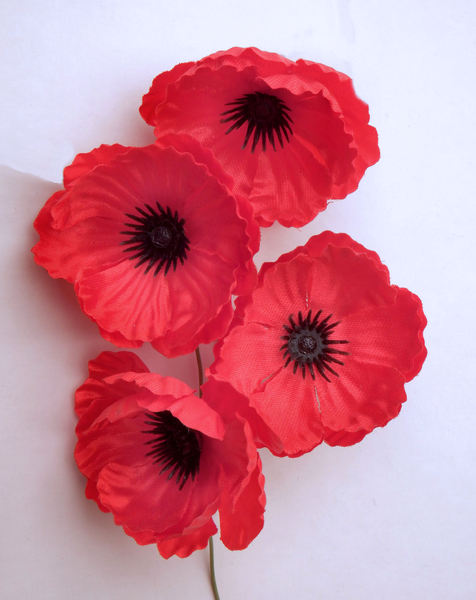 remembrance poppies3: artificial remembrance poppies