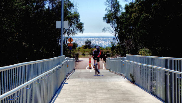 foot & cycle bridge4