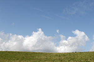 Landscape and sky: Summer clouds over a meadow in Sussex, England.