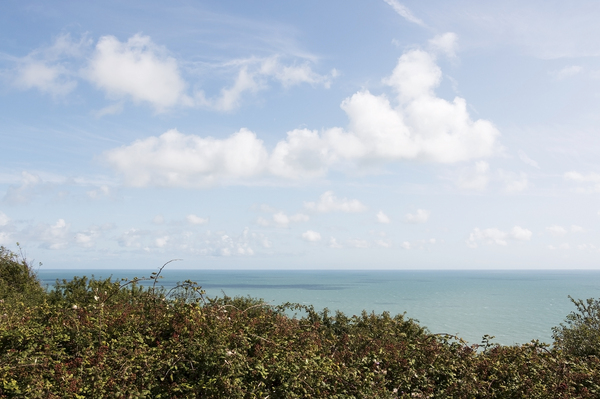 Sea view: View of the sea over clifftop bramble bushes in East Sussex, England.