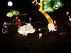Fantasy Lights 5: Pictures of the China Festival of Lights in Emmen.