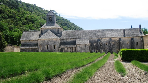 Senanque Abbey: The most famous cistercian Abbey in Vaucluse in Provence in France