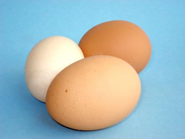 Chicken Eggs: Chicken Eggs