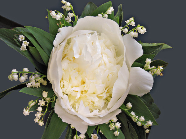 peony & lilies of the valley b: peony and lilies of the valley bouquet