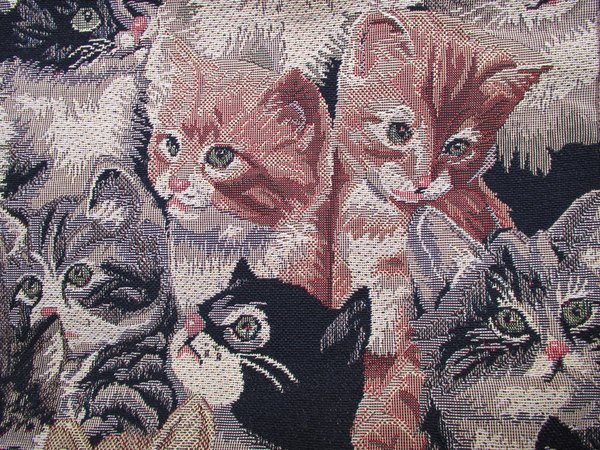 cats tapestry: cats tapestry