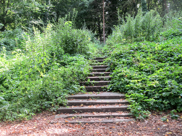 Resultado de imagen para el misterio de las escaleras que no llevan a ninguna parte