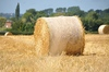 Hay bales 2: Hay bales in the field. Normandy France