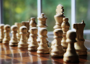 Chess Anyone?: Chess pieces