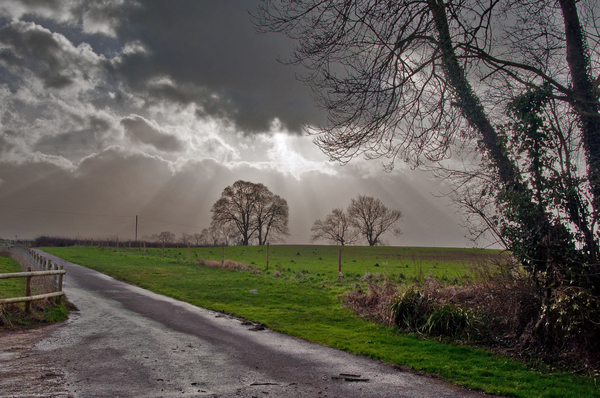 Road on a Cloudy Day: Little farm lane against the backdrop of a moody sunlit sky.