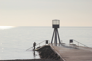 Human Silhouettes: Morning swim in Öresund