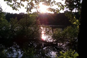 Sunset by the Forest Lake: Sun is setting and waster reflects the light so beautiful