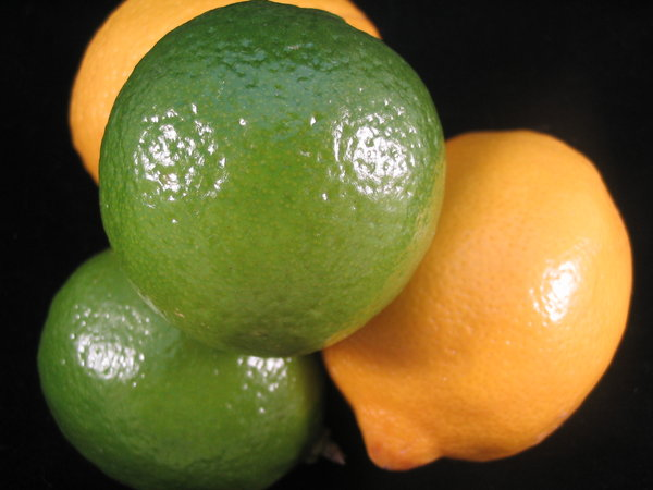 limes and lemons: limes and lemons