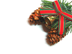 Pine Cones: Contact me for larger sizes.