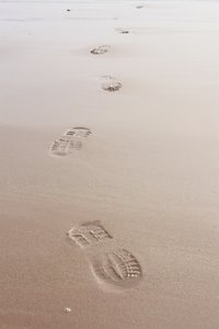 Footprints in the sand: Footprints in wet sand
