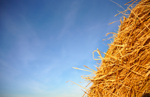 Hay bale: Textures and backgrounds formed from hay bales in evening sunshine