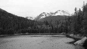 Along the trail: Some photos taken along Cub Lake Trail in Rocky Mountain National Park. Sorry, normally I like to upload in color and let the users convert to black & white if they want to but the color version was all but useless due to the lighting etc.