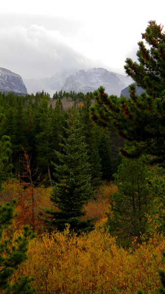 Rocky Mountian National Park: Some shots of Rocky Mountain National Park, CO. 10-10-10.