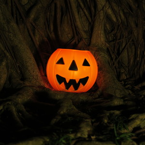 Halloween pumpkin 1: Halloween pumpkin with tree roots