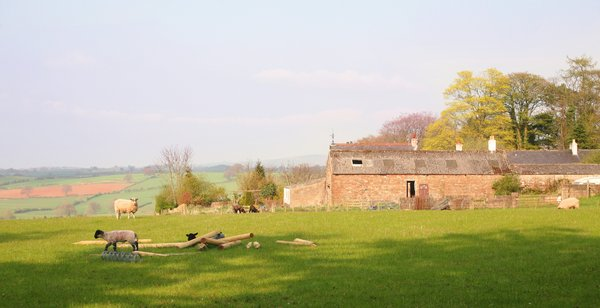 Cumbrian Farm: An English Farm shot in Spring Sunshine