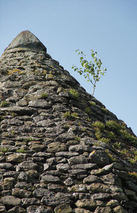 pyramid: stone and tree