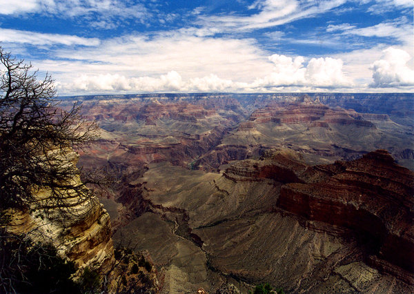 Grand Canyon: Landscape of Grand Canyon