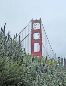 Golden Gate Bridge: Golden Gate Bridge with sailboats on a misty day in San Francisco