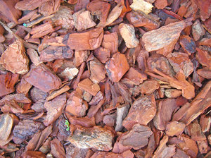 Pine-tree bark: Mostly used for gardening