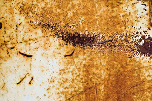 Industrial Erosion 2: Painted, eroded metal surface.
