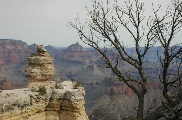 Grand Canyon area 1: Here is a series of images from the Grand Canyon in Arizona.