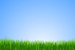 Vector Grass: Vector grass in the blue background