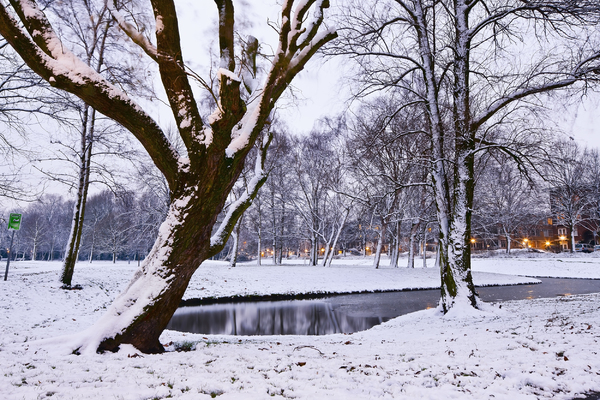 Winter scene: Picture was taken in Rotterdam, the Netherlands