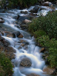 river: little creek in Austria