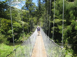 Swing bridge: Walking across a swing bridge in the Karangahake (pronounced ka-rang-ah-hack-ee) Gorge in the North Island, New Zealand
