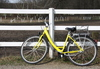 Yellow bicycle: A yellow bicycle, leaning at a gate of a horse paddock