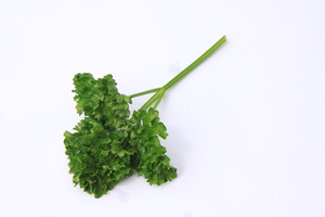 Parsley: Parsley