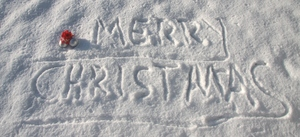 Merry Christmas: Written in the snow
