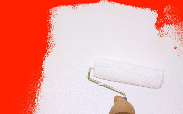 Paint: Painting a wall, renovating the house