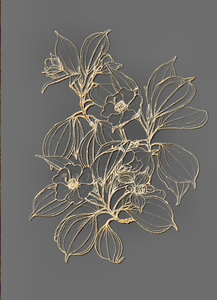 Botanical illustration: Botanical drawing was used on several layers for this illustration