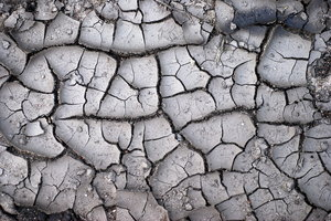 Drought texture 1: Crusty ground pattern