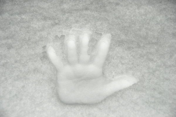 Hand-mark on the snow: Palm print on the white