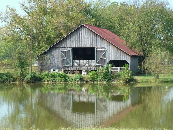 Barn on pond: A barn reflects into a small pond