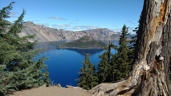 Crater Lake: Crater Lake and Wizard Island framed by trees