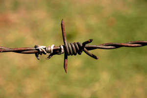 barbed wire 1: barbed wire