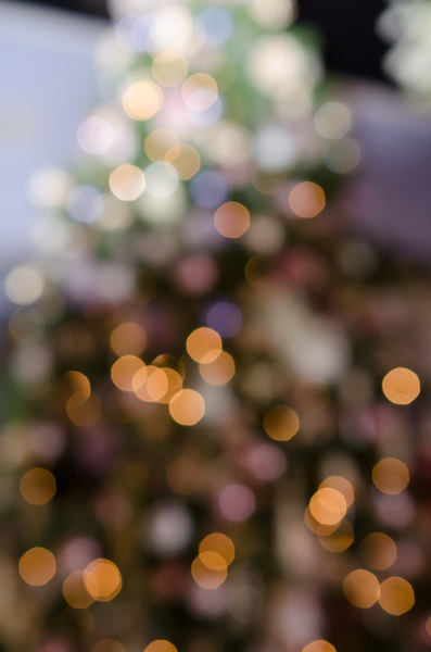 Christmas Tree Bokeh: xmasphoto2015 Out of focus lighted tree .