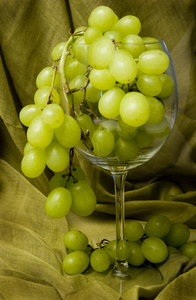 grapes: grapes in glass with green background