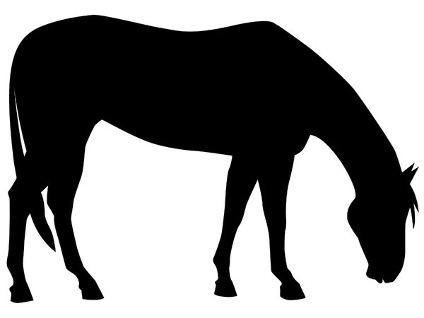 Grazing Horse: Vector Art