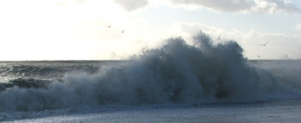 Rough Day: Waves breaking on a windy day
