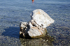 rock in sea: rock in sea-picture taken in Epidaurus,Greece